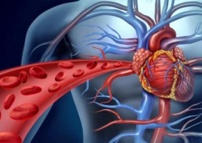Angiologia e Cirurgia Vascular